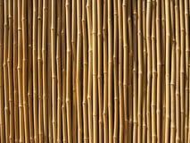 Parede de bambu Fotos de Stock