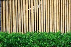 Parede de bambu Imagem de Stock Royalty Free