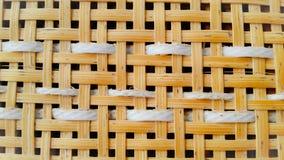 Parede de bambu das árvores Fotos de Stock