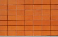 Parede de blocos vitrificados da terracota Fotografia de Stock