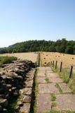 Parede de Hadrian Imagens de Stock