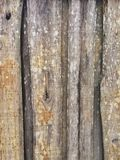 Parede de madeira Imagens de Stock Royalty Free