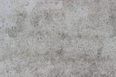 Parede de madeira da textura branca frontal pequena da placa da madeira compensada da microplaqueta fotografia de stock royalty free