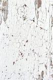 A parede de madeira da textura do Grunge com pintura branca está descascando severamente o fundo abstrato do estilo antigo imagens de stock