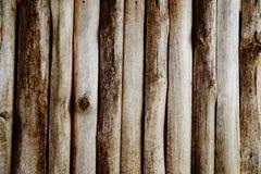 Parede de madeira dos registros Fotos de Stock Royalty Free