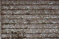 Parede de madeira envelhecida Fotos de Stock