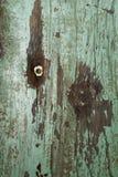 Parede de madeira verde Imagens de Stock