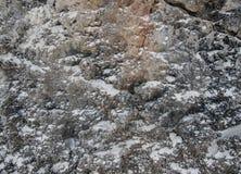Parede de mar de pedra Imagem de Stock Royalty Free