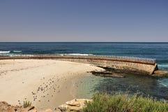 Parede de mar na praia das crianças fotos de stock