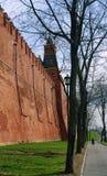 Parede de Moscovo Kremlin em um dia ensolarado Fotografia de Stock Royalty Free