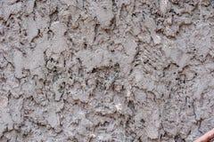 Parede de pedra 2 imagem de stock royalty free