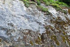 Parede de pedra com musgo 1 Imagens de Stock Royalty Free