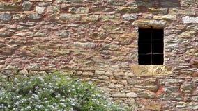 Parede de pedra com o arbusto da janela e das flores na flor video estoque
