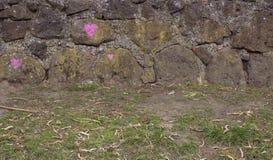 Parede de pedra com três corações cor-de-rosa imagem de stock royalty free