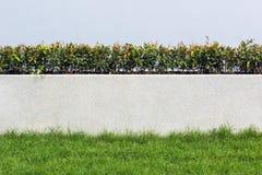 A parede de pedra e a flora com grama na decoração do jardim projetam para Fotografia de Stock