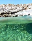 Parede de pedra em uma praia rochosa, split do mar Foto de Stock Royalty Free