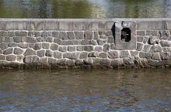 Parede de pedra no rio Imagens de Stock Royalty Free