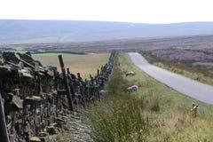 Parede de pedra seca de Yorkshire Imagens de Stock Royalty Free