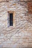 Parede de pedra de um castelo medieval com uma janela da hera Fotografia de Stock
