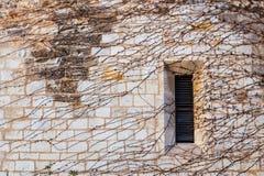 Parede de pedra de um castelo medieval com uma janela da hera Fotos de Stock