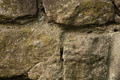 Parede de pedra velha coberta com o musgo Imagem de Stock