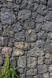 A parede de pedra vulcânica Foto de Stock