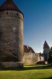 A parede de Tallin Imagens de Stock Royalty Free