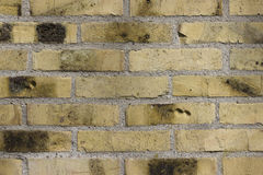 Parede de tijolo, Foto de Stock Royalty Free