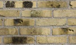 Parede de tijolo, Fotos de Stock Royalty Free
