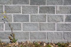 Parede de tijolo cinzenta Foto de Stock Royalty Free