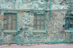 A parede de tijolo cobriu a malha verde da fachada Imagens de Stock