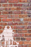 Parede de tijolo com respingo da pintura Imagem de Stock Royalty Free