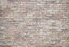 Parede de tijolo comum espremida fotografia de stock royalty free