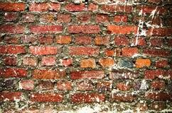 Parede de tijolo de Grunge imagens de stock royalty free