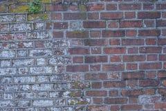 Parede de tijolo de um forte histórico 2 da guerra civil Imagem de Stock