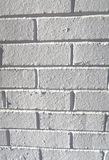 Parede de tijolo decorativa do emplastro Fotografia de Stock Royalty Free
