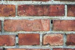 Parede de tijolo do close-up Foto de Stock