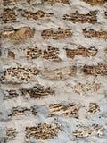 Parede de tijolo, escudo de pedra da pedra, arenito, alvenaria, junções do cimento fotografia de stock