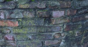 Parede de tijolo fora de um forte histórico da guerra civil Imagens de Stock Royalty Free
