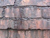 Parede de tijolo gordurosa velha Fotos de Stock Royalty Free