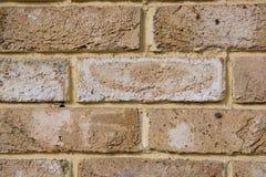 Parede de tijolo naughty foto de stock