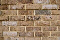 Parede de tijolo naughty imagens de stock