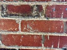 Parede de tijolo velha Imagem de Stock Royalty Free