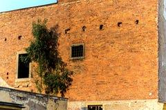 Parede de tijolo velha com uma janela da porta - 3 retros imagens de stock royalty free