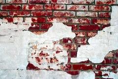 Parede de tijolo vermelha do grunge Fotos de Stock Royalty Free