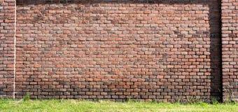 Parede de tijolo vermelho-alaranjada velha e um gramado 1 Fotos de Stock