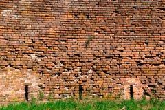 Parede de tijolo vermelho-alaranjada velha e um gramado 4 foto de stock royalty free