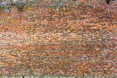 Parede de tijolo vermelho-alaranjada velha, textura 11 do fundo imagem de stock royalty free