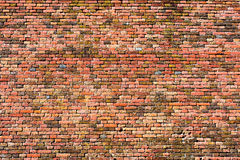 Parede de tijolo vermelho-alaranjada velha, textura 14 do fundo Imagens de Stock