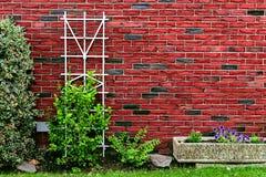 Parede de tijolo vermelho no pátio traseiro com a construção das plantas verdes em casa decorada com árvore, rochas, arbustos e p Imagens de Stock